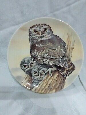 Stunning Owl Plate By Linda Smith