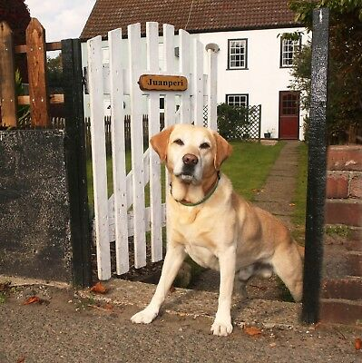 NOVEMBER week from 23rd at Norfolk dog friendly holiday cottage Winterton-on-Sea