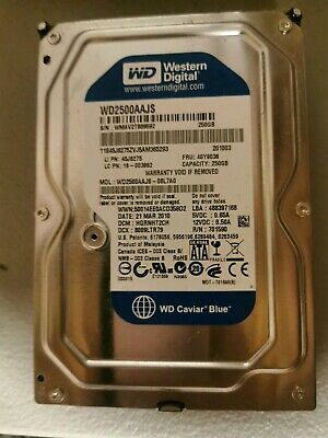 Western Digital 250 GB Caviar Blue SATA 3 Gb/s 7200 RPM 8 MB Bulk/OEM Hard Drive