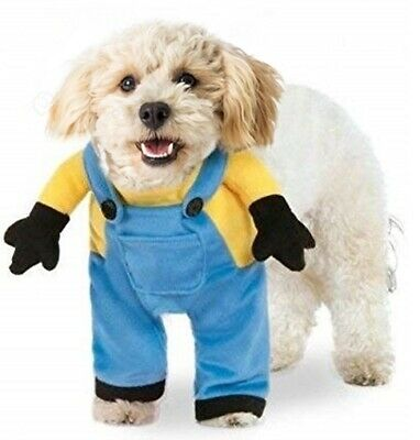 Despicable Me Movie Minion Suit Pet Dog Halloween Costume Medium Rubies