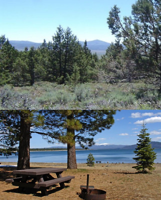 Nice 27.9 Ac Trees, Rd 360°Views, Lassen County The Majestic Pristine California