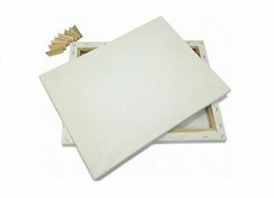 Blank Artist Canvas Art Board Plain Painting Stretched Framed White (Pack Of 6)