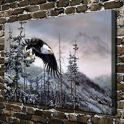 """12""""x18"""" Subduction of the eagle HD Canvas Home Decor Wall art Pictures Paintings"""