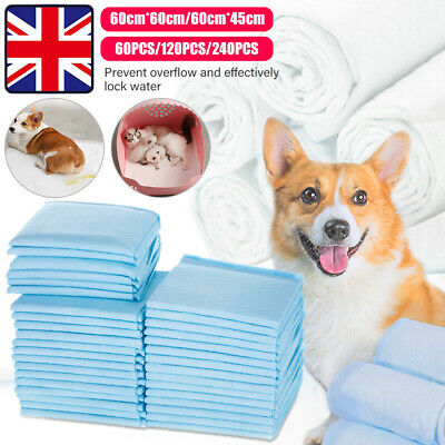 Large Puppy Training Trainer Pads Toilet Pee Wee Mats Dog Cat 60X60/ 60X45Cm Pet