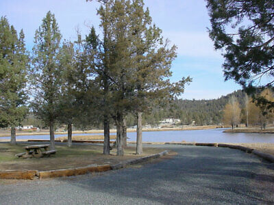 Northern California --   1.57 Acres  ----- Forclosure