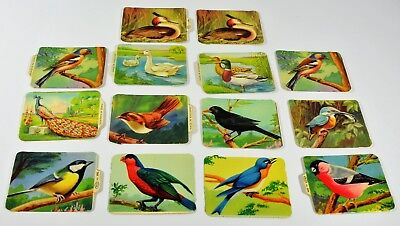 Vintage Birds Embossed Paper Scraps Lot of 14 MP Mamelok Press England