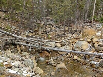 GOLD MINE Historic Basin MT Dixie Queen Placer 20 Acre Gold Mining Claim