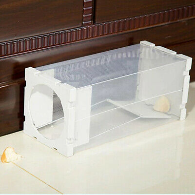 Humane Rat Trap Cage Animal Pest Rodent Mice Mouse Control Live Bait Catch UK