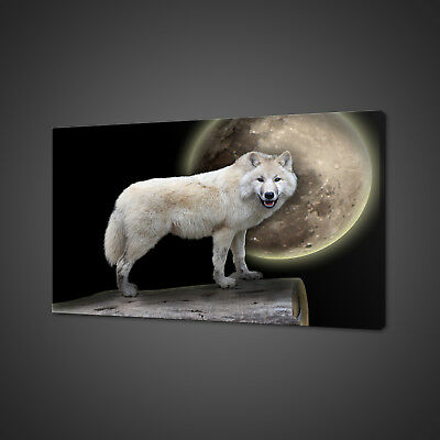 White Wolf Full Moon Canvas Picture Print Wall Art Home Decor Free Fast Delivery