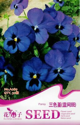 50 Seeds//Pack White Pansy Seed Viola Tricolor Herb Trinity Original Package A087