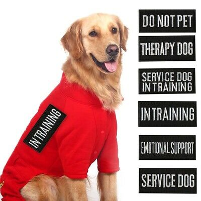 Patches For Harness Vest Service Dog In Training Security Therapy Dog - 9*4cm .