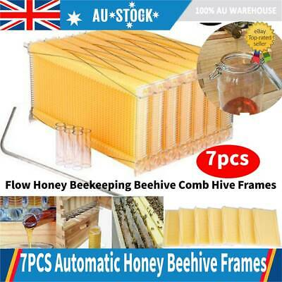 7pcs Auto Flow Honey Beekeeping Beehive Comb Hive Frames Kits Harvesting Tubes A