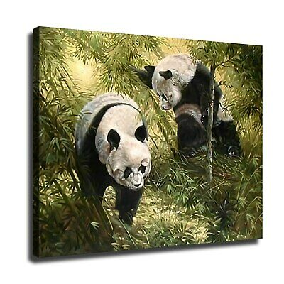 "12""x16""Giant panda in bamboo forest HD Canvas Painting Home Decor Wall art"
