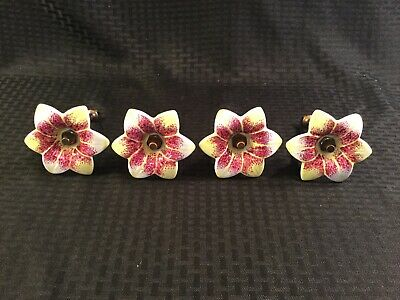 "4 Magenta Yellow & White Porcelain 5"" Flower Curtain Pull Backs"