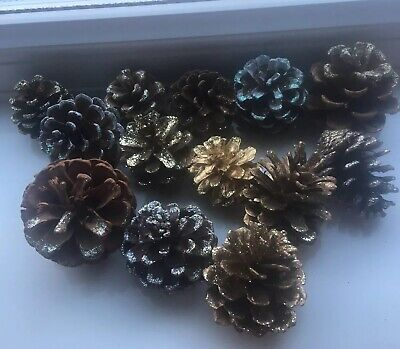 13 pine cones natural for Christmas, wreaths, florists, crafts etc