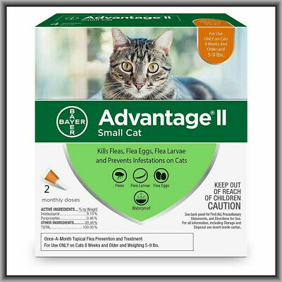 Bayer Advantage II Flea Treatment for Large Cats Over 9 lbs 2 doses(damaged box)