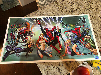 J Scott Campbell 14X25 Lithograph Signed By Stan Lee W/ Coa Spider-Man