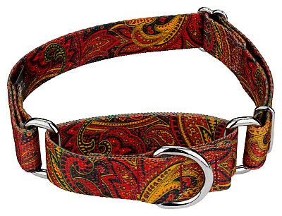 Country Brook Petz® Fire Paisley Martingale Dog Collar