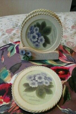 Coaster set with holder primulas