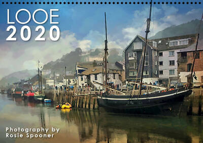 Looe 2020 calendar A4 with drop down appointments page