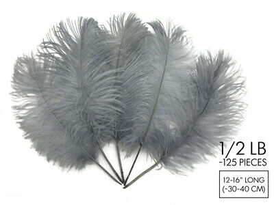 """125 Feathers - Silver Gray Ostrich Tail Wholesale Bulk 12-16"""" Carnival Costume"""