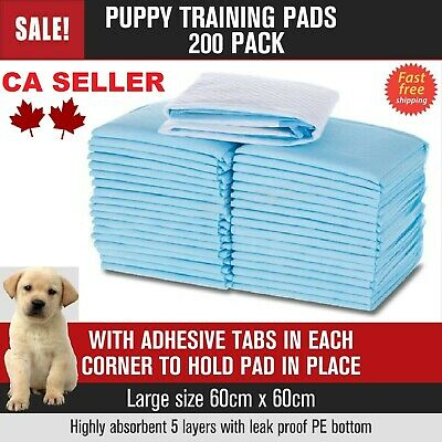 Puppy Pet Dog Indoor Cat Toilet paper Training Pee Pads Absorbent Thin 60X60cm