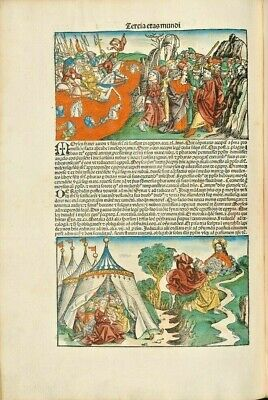 """Nuremberg Chronicle12 Fine Art Archival Quality Prints Mounted .12x18"""" .NEW"""