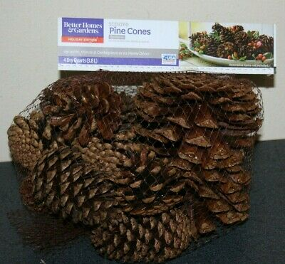 Better Homes & Gardens Cinnamon Scented Pine Cones NEW 3 Dry Quarts
