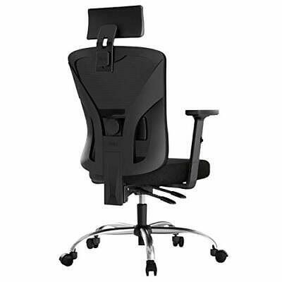 Hbada Ergonomic Office Desk Chair with Adjustable Armrest, Lumbar Black