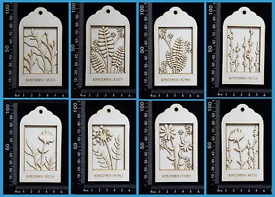 White Chipboard Embellishments - Botanical - Mini Shadow Boxes