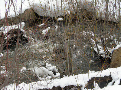 Colorado Gold Mine Placer Claim Prime Mining Cottonwood Creek Panning Sluice-NR!