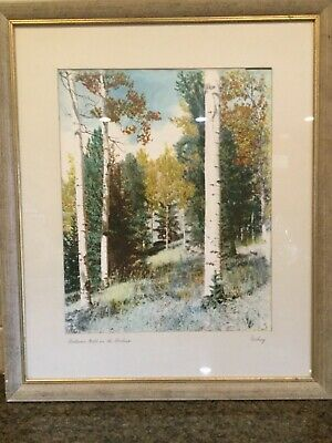"Hand Colored Large plate art photo s/ Veburg ""Autumn Gold in the Rockies"""