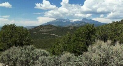 5.04 Acres Heavily Wooded Mountain Land, In Sangre De Cristo Ranches, Co. Cash