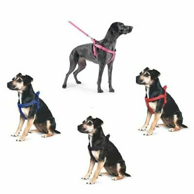 Ancol Nylon Padded Dog Puppy Harness Reflective Stitching All Sizes 4 Colours