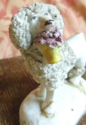 Early Poodle Staffordshire figure antique 19th century