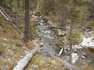GOLD MINE Historic Basin MT Pan Shot Frank Placer 20 Acre Gold Mining Claim