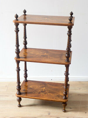 Regal Etagere antik in Walnuss, England um 1860