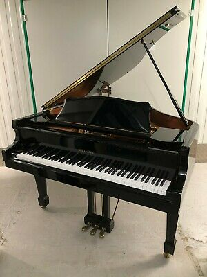 Self Playing Baby Grand Piano - Pianodisc  Disklavier
