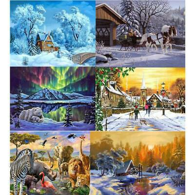 Canvas DIY Digital Oil Painting Kit Paint by Numbers No Frame Decor 40 X 50cm