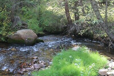 Colorado Gold Mine Placer Claim Prime Mining Big Union Creek Panning Sluice