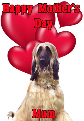 Afghan Hound Dog Mother/'s Day Personalised Greeting Card Mum Nan FV182