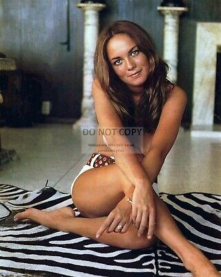 Actress Catherine Bach - 8X10 Publicity Photo (Sp418)