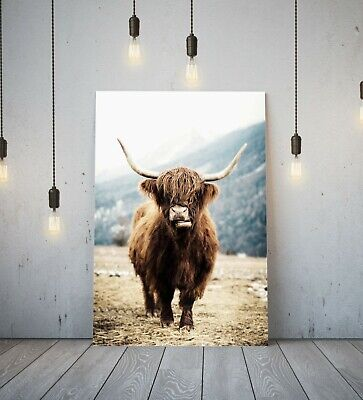 Highland Cow - Deep Framed Canvas Wall Art Picture Print- Brown Animal