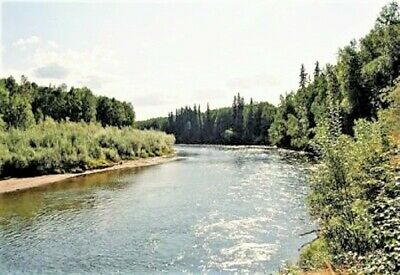 Gorgeous 20Ac Alaska,Pond, 72Ft River Front +1,800Ft River Front Easement To Use