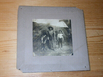 vintage Downers Grove Illinois CABINET CARD Photo ** Boys with Pitchfork ** HAY