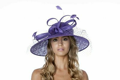 Stunning Purple Hat Sinamay loops,net veil & coque feathers .wedding,ascot