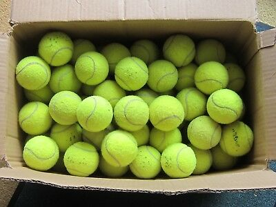 100 Used Tennis Balls.  Perfect for dogs.