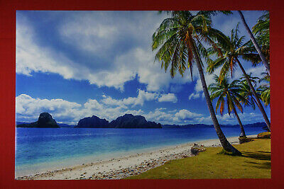 """Sunny Sandy Beach with Palm Trees photography poster 24 x 36/"""""""