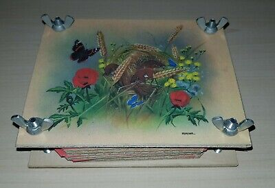 Dried Flower Press Wooden,arts and crafts,harvest mice,poppy,butteryfly,12x9cm