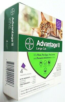 Bayer Advantage II 4 Pack for Large Cats Over 9 lbs Genuine EPA Approved NEW
